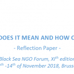 Black Sea NGO Forum Reflection Paper on CSO Resilience: What Does It Mean And How Can We Strenghten It?